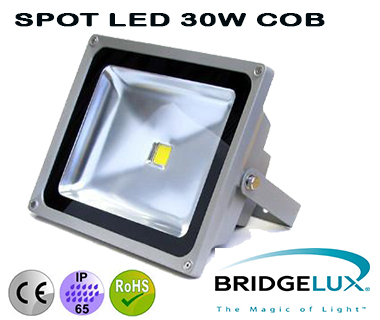 projecteur a led 30w cob led bridgelux. Black Bedroom Furniture Sets. Home Design Ideas