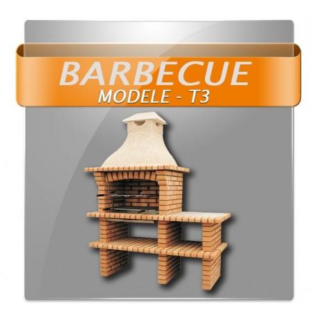 Barbecues en brique rouge avec foyer acier, grilles rotatives et plan de travail en granite polis.